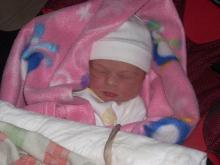 Maia appena nata